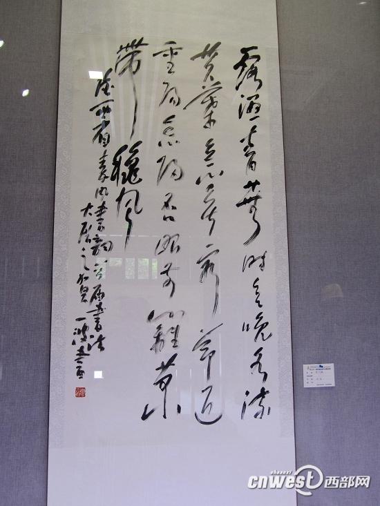 陕西省首届书法篆刻展在西安开展展出212件精