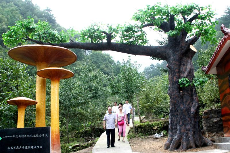 山茱萸农业观光园