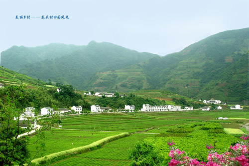 平利县龙头旅游村