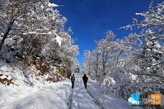 冬季到宁陕来看雪
