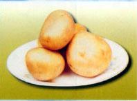 子长马铃薯